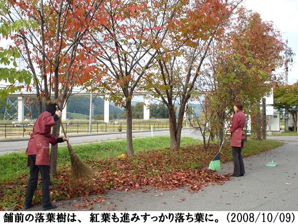 2008/10/09撮影