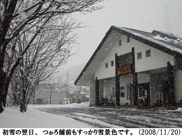 2008/11/20撮影
