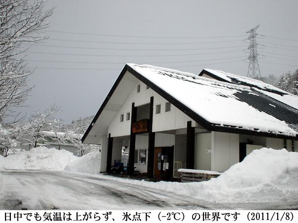 2011/01/08撮影