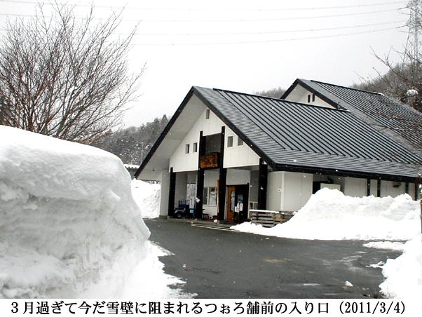 2011/03/04撮影