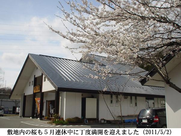 2011/05/02撮影