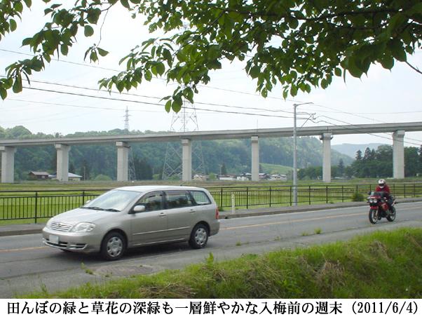 2011/06/04撮影
