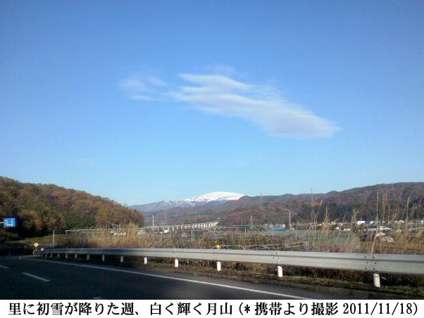 2011/11/18撮撮影