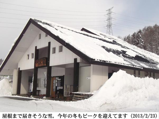 2013/02/23撮影