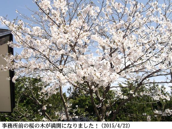 2015/04/22撮影