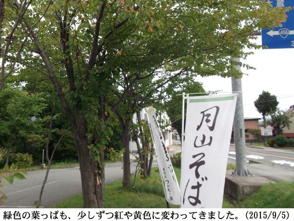 2015/09/05撮影