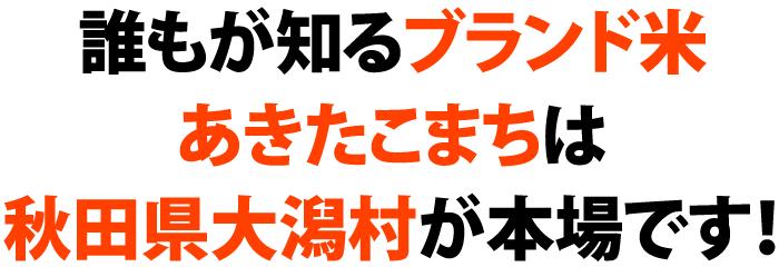 誰もが知るブランド米あきたこまちは秋田県大潟村が本場です!