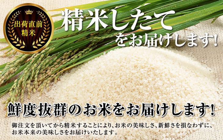 精米したてのお米をお届けします