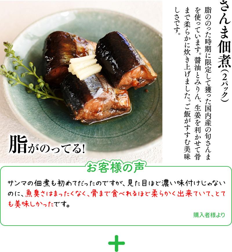 さんま佃煮(2パック)