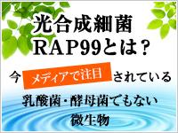 光合成細菌RAP99とは?