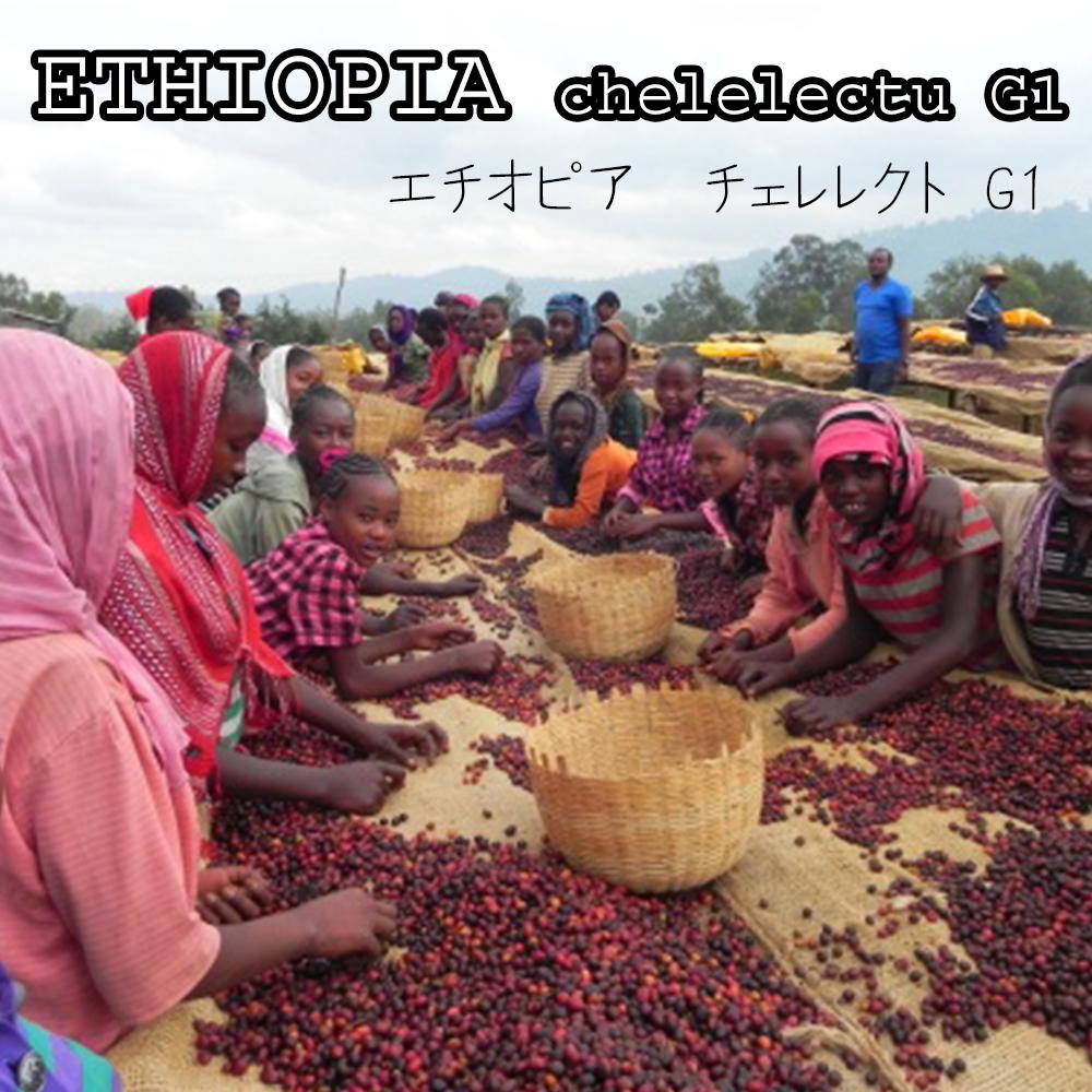 エチオピアチェレレクトG1