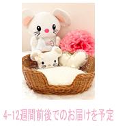 FPO New Limited Basket Sofa TOPOMIO