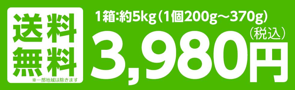 福島産 早生ふじ・サンふじ 5kg