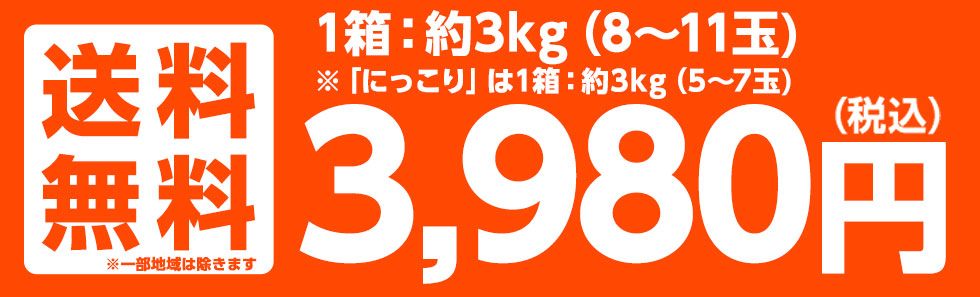 送料無料 3,280円
