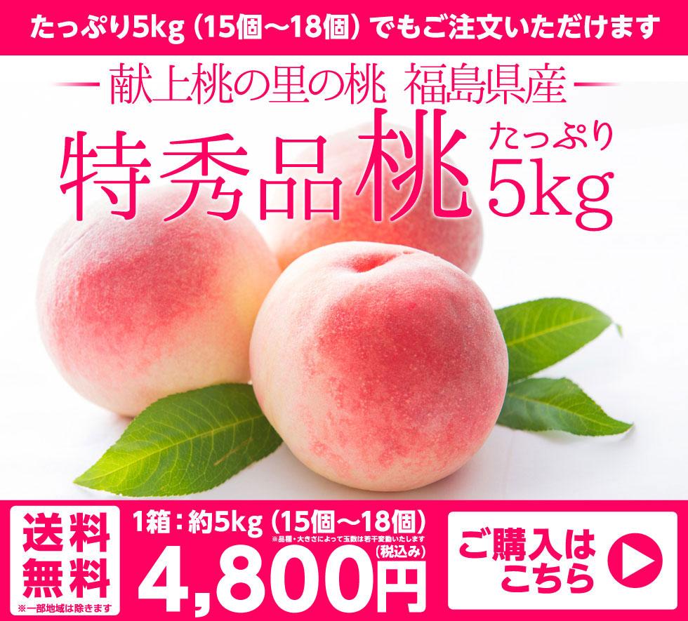 献上桃の里の桃 特秀品 桃 5kg