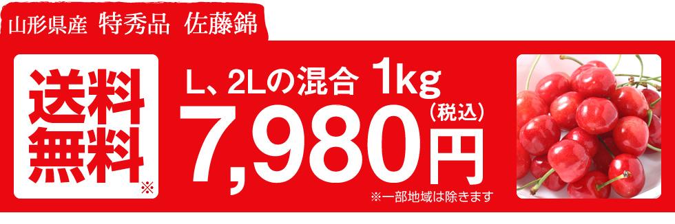 送料無料 7.980円