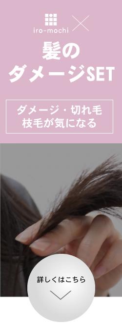 髪のダメージセット