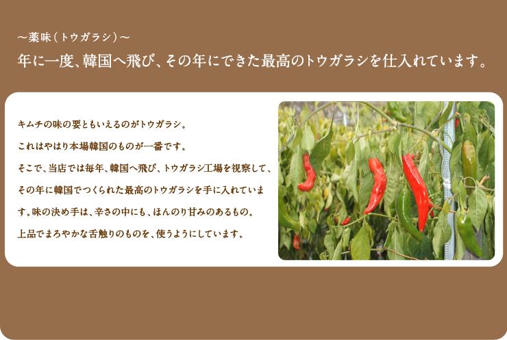~薬味(トウガラシ)~年に一度、韓国へ飛び、その年にできた最高のトウガラシを仕入れています。