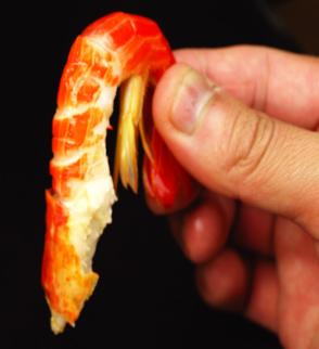 殻をむいてもこの大きさ!1尾1尾が食べ応え十二分です!