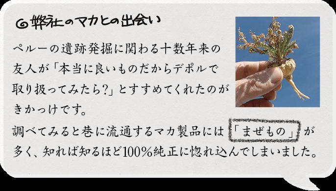 マカタブレット100%純正