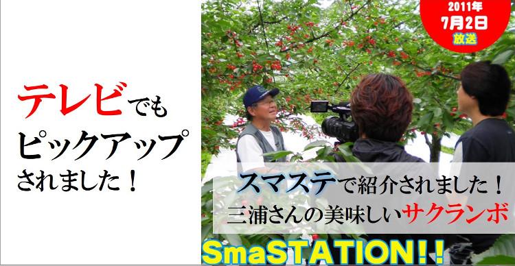 さくらんぼ 佐藤錦 テレビ番組スマステで紹介