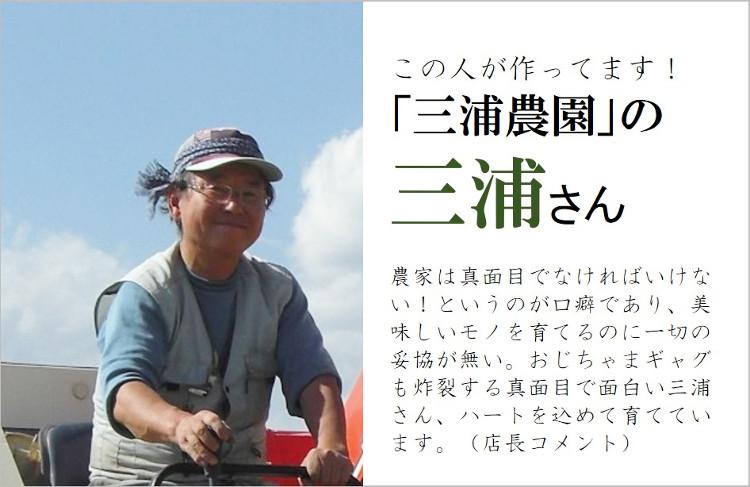さくらんぼ 佐藤錦 三浦農園 三浦さん