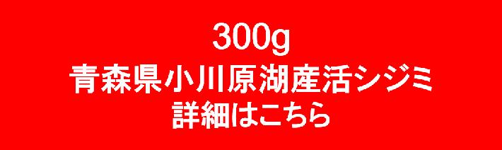 シジミ商品ページへ