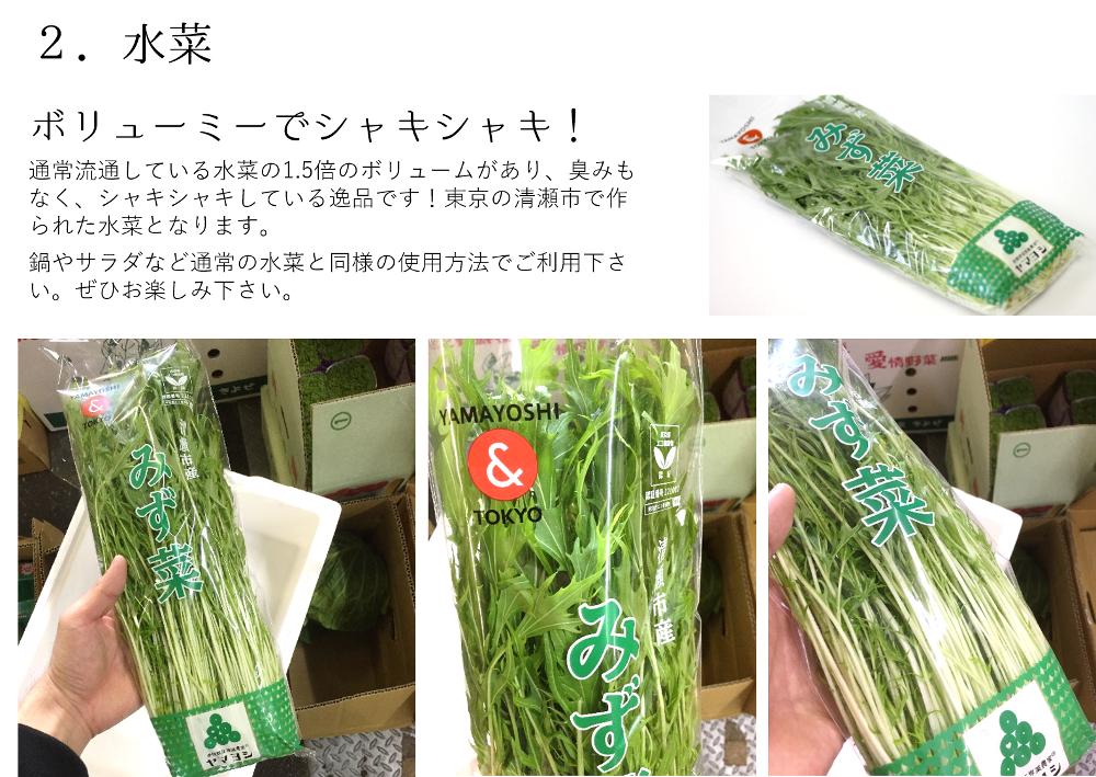 江戸東京野菜セット
