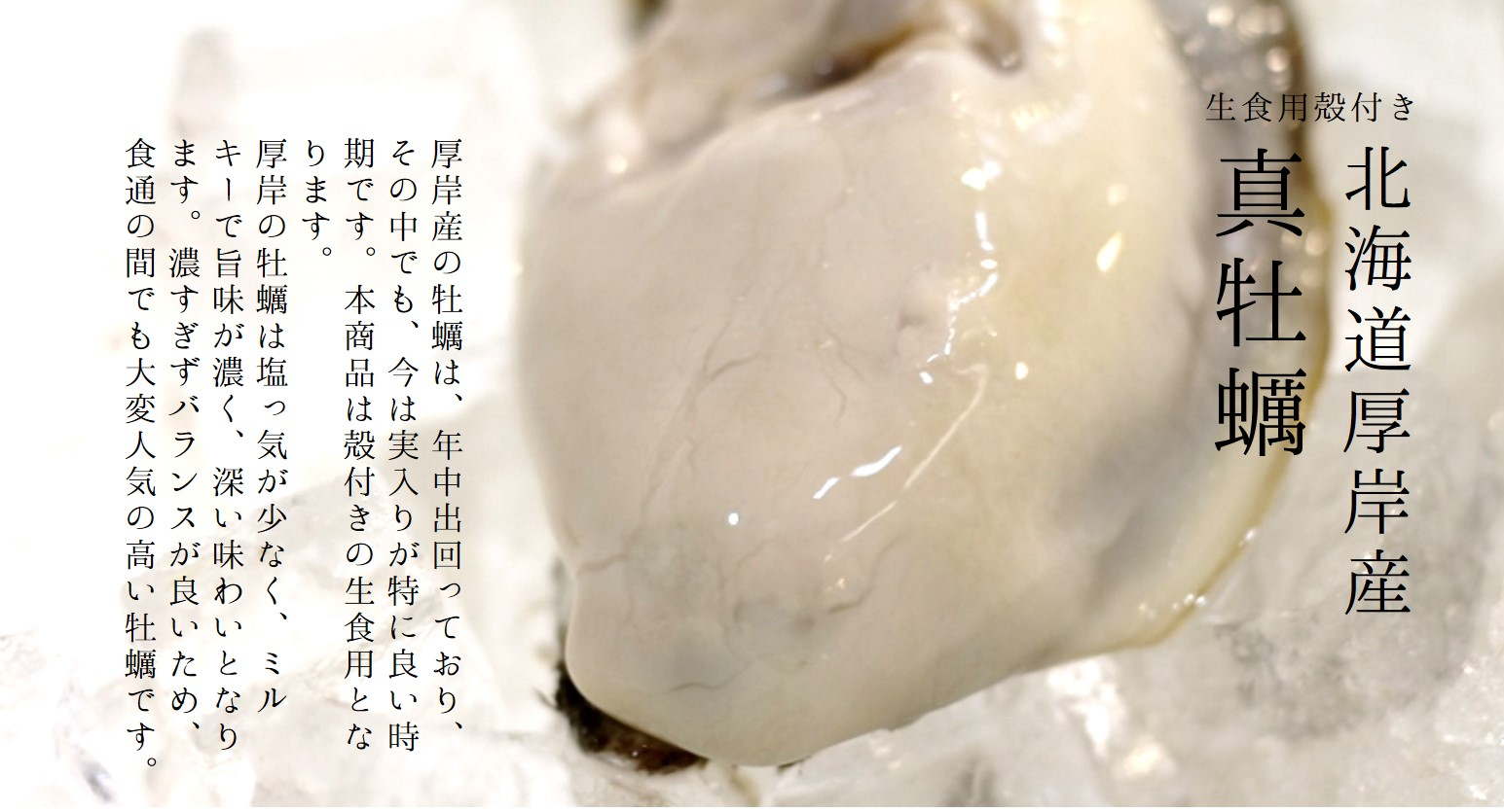 真牡蠣 厚岸