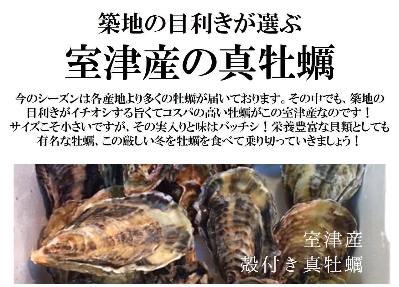 真牡蠣 室津