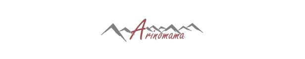 アリノママ