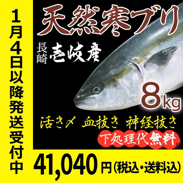 【H】寒ブリ8k