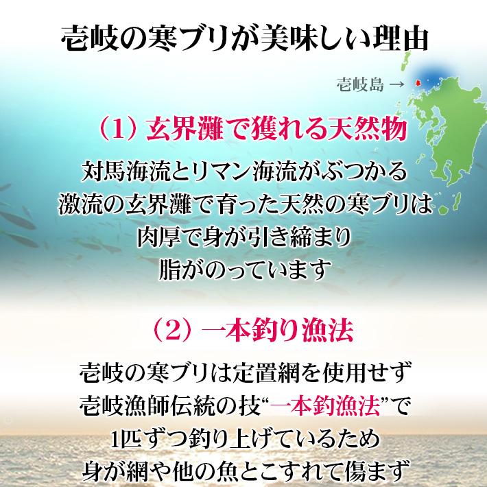 壱岐産天然寒ブリがおいしい理由 玄界灘の荒波にもまれておいしくなる鰤