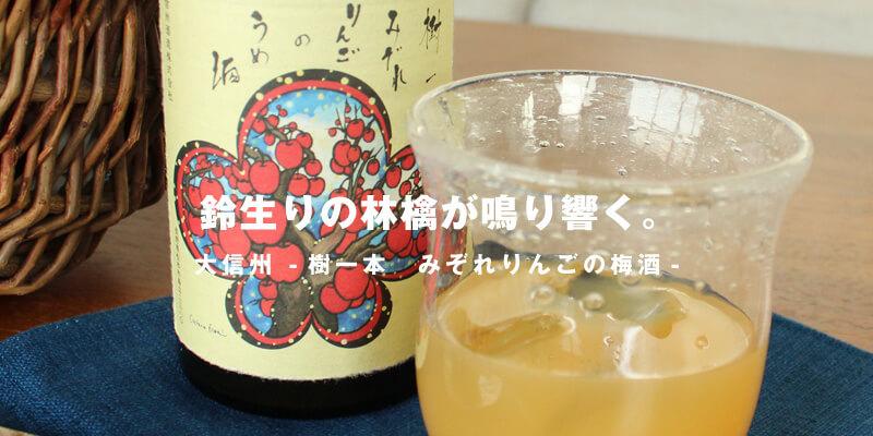 大信州樹一本みぞれりんごの梅酒