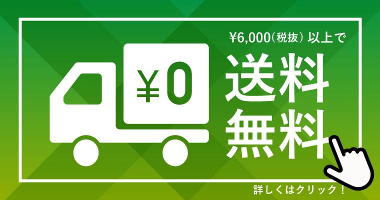 ¥6,000(税抜)以上で送料無料