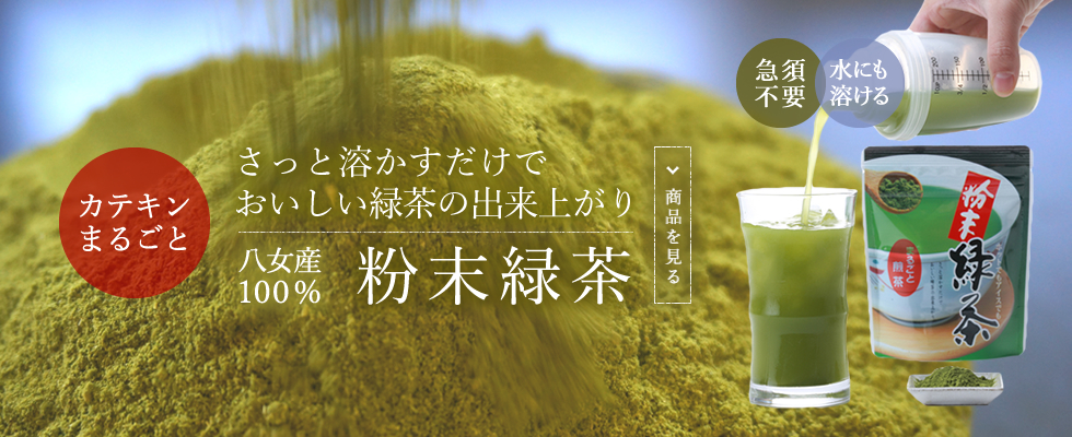 カテキンまるごと さっと溶かすだけでおいしい緑茶の出来上がり 粉末緑茶