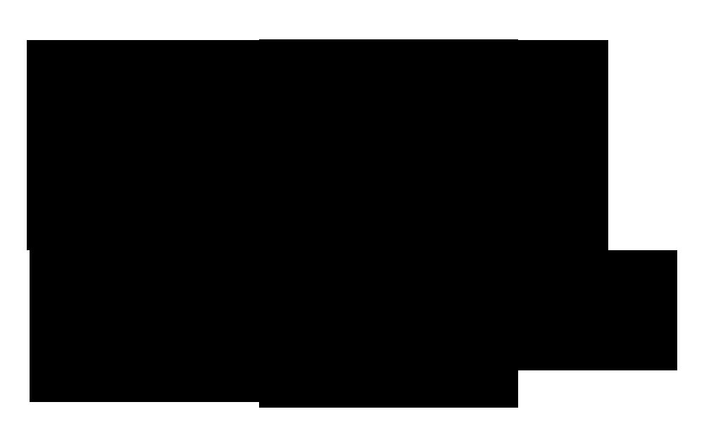 Bnumber331