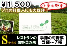 ベジプールのお野菜トライアルセット(旬野菜5種から7種)