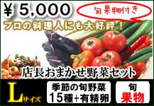 ベジプールのお野菜セット(旬野菜9種〜11種+有精卵6玉)