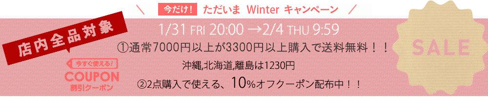 WINTERキャンペーン3240円以上で送料無料+5点以上購入で5%OFFクーポン