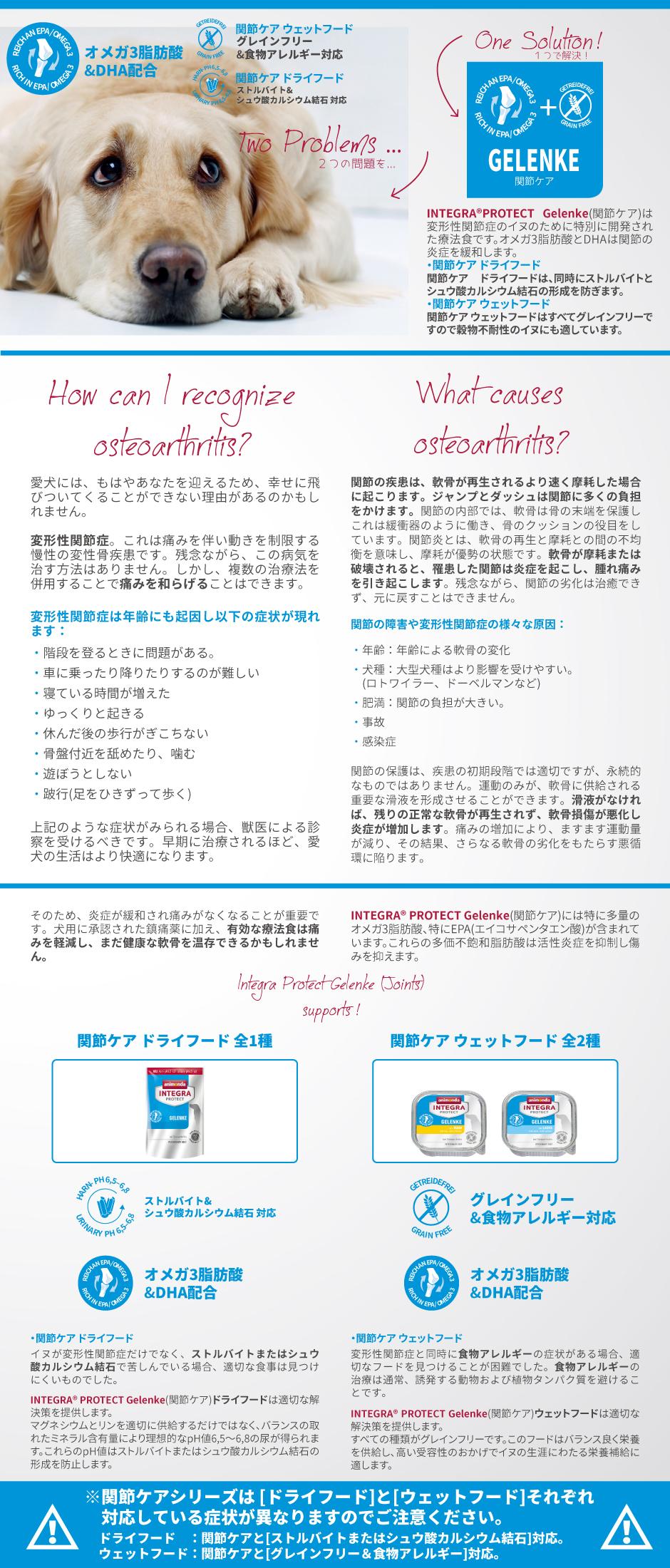 アニモンダ/インテグラ  胃腸ケア(ntestinal)サーモン [150g] dog visions