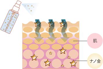 Viviani ナノゴールドローション 化粧水 ナノ金の働きかけで、肌の活力UP!