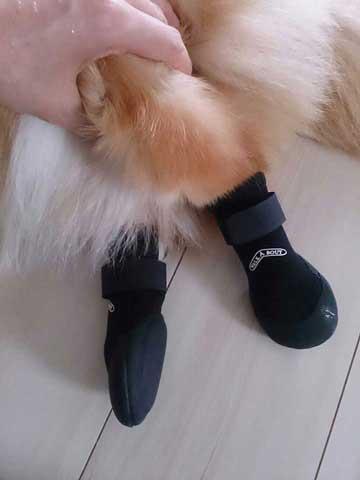 ウォーカーブーツ(保護ブーツ)