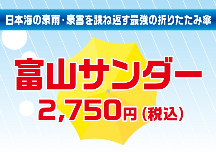 【マツコの知らない世界で紹介されました】富山サンダーBig 70cm