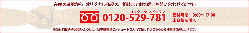�ե�������0120-529-781