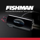 FISHMAN/フィッシュマン