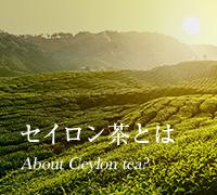 セイロン茶とは About Ceylon tea?