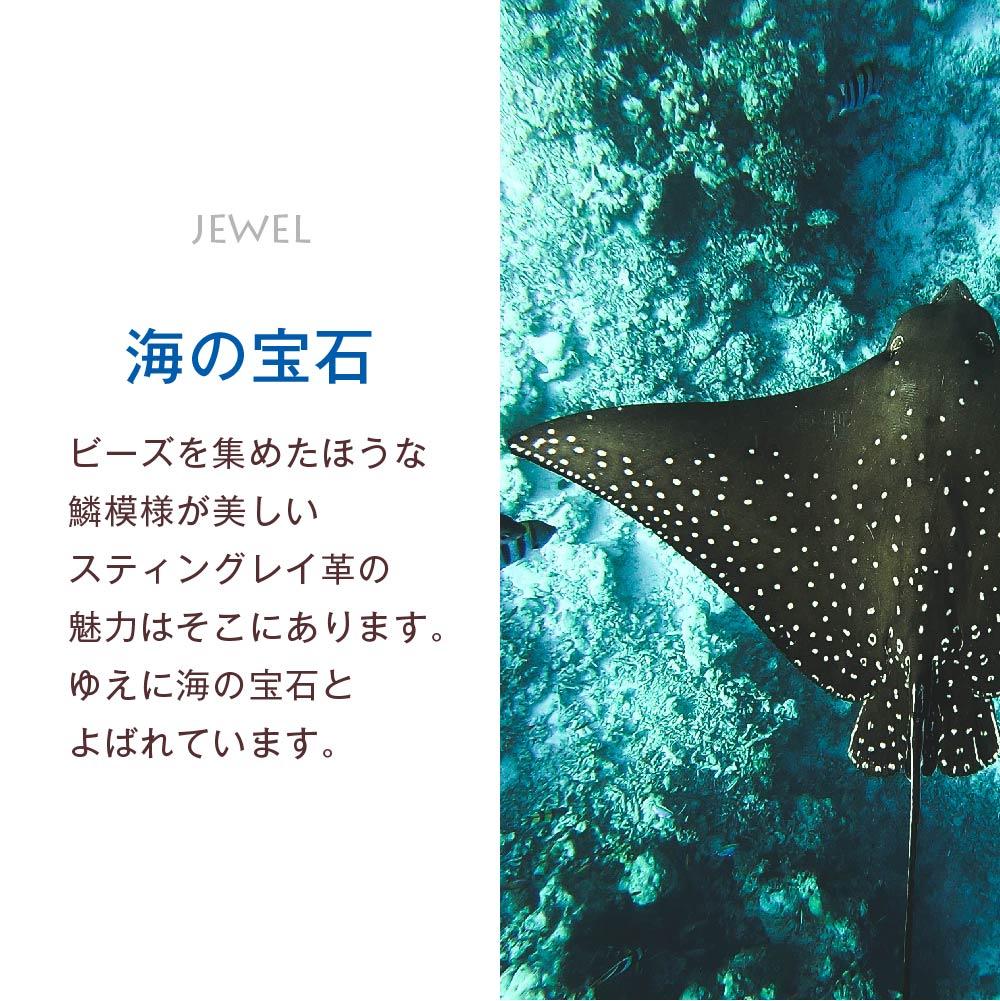 こだわりのディテール 海の宝石