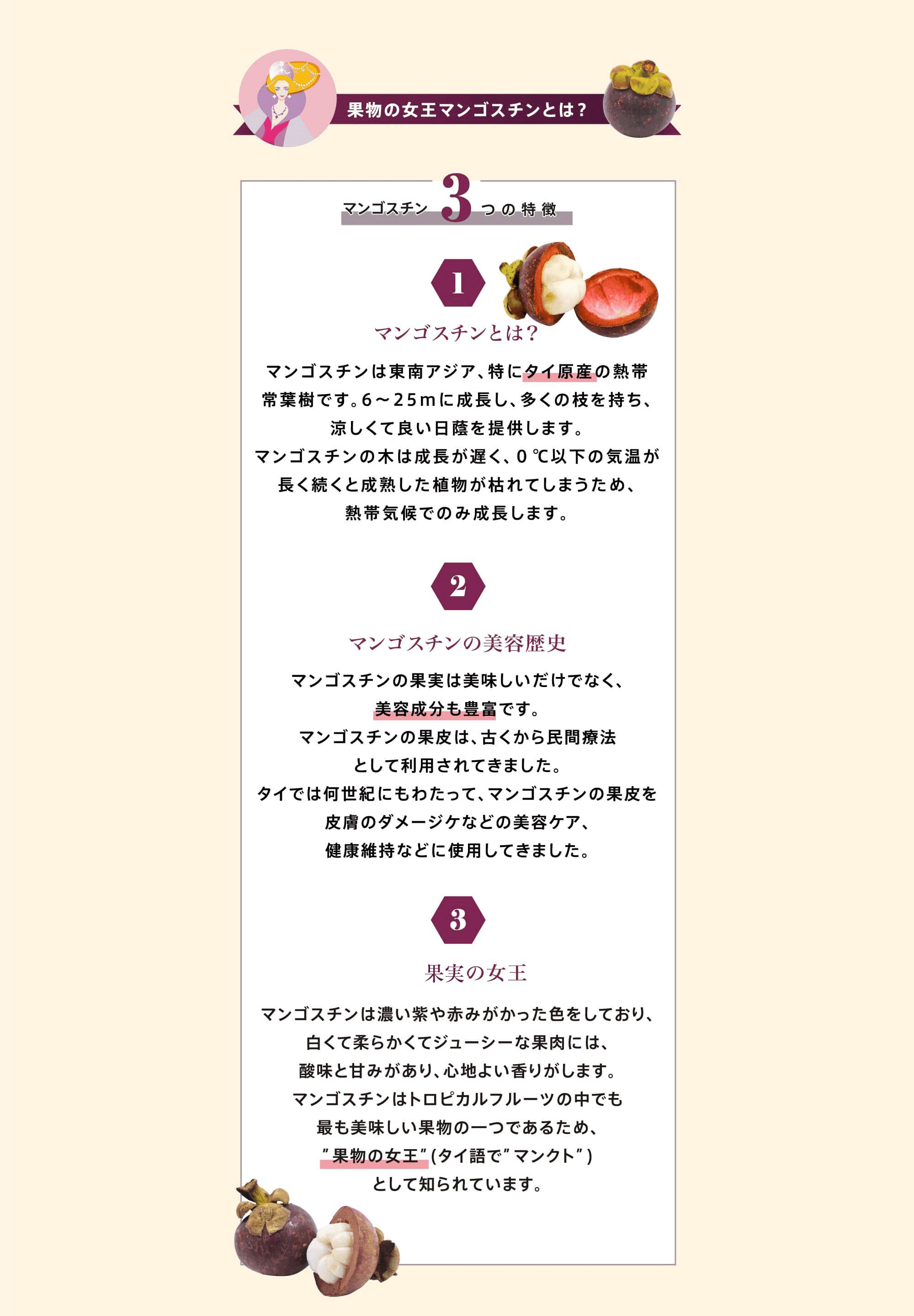 果物の女王マンゴスチンとは?マンゴスチン3つの特徴