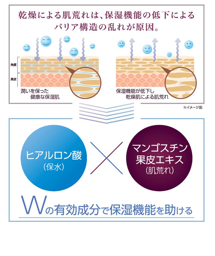 乾燥による肌荒れは、保湿機能の低下によるバリア構造の乱れが原因